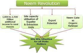 neem-process