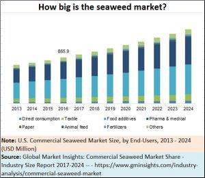 2018-06-12_seaweed-end-user-market