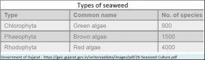 2018-06-12_seaweed-types