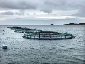 2018-10-07_GTF-Aquaculture Cage Nets