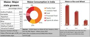 2020-10-08_Maize-states-consumption-importance